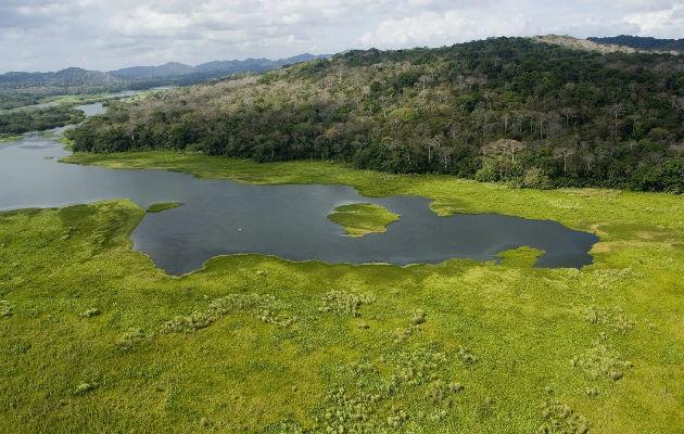Cuenca del Río Chagres, principal afluente del Canal de Panamá.  Crédito:  Archivos Smithsonian