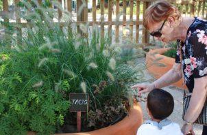 Una mujer mayor guía a un niño pequeño por un rincón del jardín terapéutico.