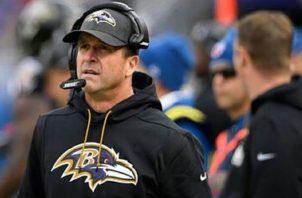 John Harbaugh, Ravens de Baltimore Foto:AP