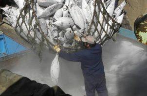 La pesca aporta un porcentaje importante al PIB mundial.