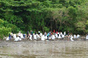 Durante la jornada de limpieza de la costa por los colaboradores de adidas. Foto: Cortesía.