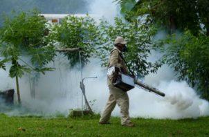 La fumigación es una de las claves contra los mosquitos. Foto: Panamá América