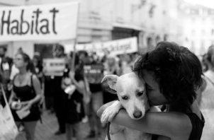 Un estado de ánimo es el estado emocional de un individuo, mientras que el afecto es la expresión de tales emociones. Foto: EFE.