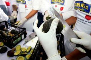 La elaboración del guacamole más grande del mundo, en México. Foto: EFE