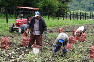 El sector agro se beneficiará con los proyectos presentados.