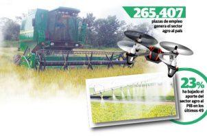Hasta agosto de 2018, el sector agro había generado unas 265 mil 407 plazas de empleo en el país, con un aporte de 1.9% al PIB, cuando en 1970 era del 25%.