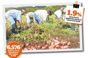 El Mida asegura que entre el 2015 y el 2018 se pagaron los incentivos a los productores de arroz por un total de 146 millones de dólares.