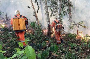 Incendio en la amazonía brasileña, en Porto Velho, capital del estado amazónico de Rondonia. Foto: EFE.