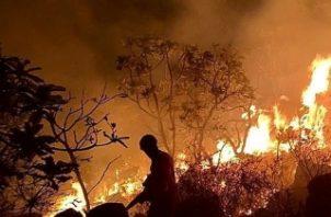 Los Bomberos del Estado amazónico de Pará, combatiendo un incendio en la región de Santarém (Pará). La tensión internacional desatada por los incendios en la Amazonía, región que concentra cerca del 15% de la agropecuaria brasileña, deja en el aire la aprobación del acuerdo entre la UE y el Mercosur y abre dudas sobre el futuro de las exportaciones del país por el temor de algunos sectores a un boicot. FOTO/EFE