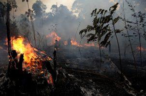 Un incendio quema árboles y roza a lo largo del camino hacia el Bosque Nacional Jacunda, cerca de la ciudad de Porto Velho en la región de Vila Nova Samuel, que es parte de la Amazonía de Brasil.FOTO/AP