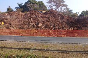 El proyecto desvastó bosques. Foto de archivo