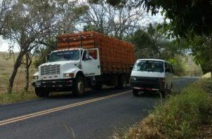 Los pollos que eran transportados en el camión no sufrieron picaduras. Foto: Thays Domínguez.