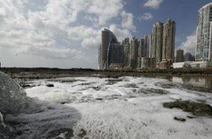 Las expectativas por el desarrollo y descontaminación de la bahía ha generado mucha confianza. Foto de archivo