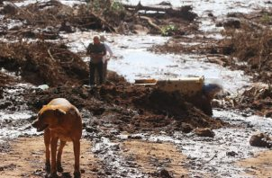 Vista del desastre causado por la rotura de una represa que contenía residuos minerales de la compañía Vale, la mayor productora mundial de hierro. FOTO/EFE