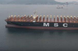 Nuevo abanderamiento refuerza la línea comercial que une al Primer Registro del Mundo (Panamá)  y a la Compañía MSC. Foto/Cortesía/AMP
