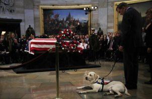 Los perros proporcionados por America's VetDogs son entregados sin costo para ofrecer un servicio que puede costar hasta $50,000 entre la crianza, entrenamiento y colocación, dijo Miller. FOTO/AP