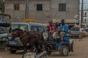 Las carretas tiradas por caballos son populares en Rufisque, suburbio de Dakar, Senegal. Pasan por caminos intransitables para autos y son más baratas que los taxis. Foto/ Yagazie Emezi para The New York Times.