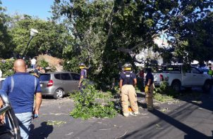 No se registraron personas lesionadas. Foto: José Vásquez.
