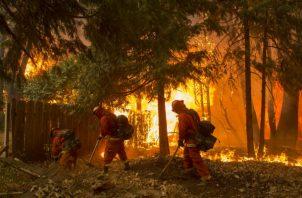 El incendio, que comenzó el pasado 8 de noviembre, ha destruido unas 14.000 viviendas, más de 500 negocios y otros 4.250 edificios.