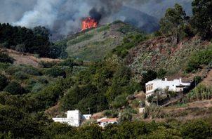 Vista del incendio forestal en la isla española de Gran Canaria y que ha obligado a evacuar de sus viviendas a 2.000 habitantes de seis poblaciones afectadas y podría haber quemado ya unas mil hectáreas. FOTO/EFE