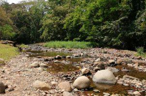 El río Campana abastece las cuatro tomas de agua. Foto/Eric Montenegro