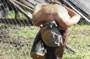 El delincuente fue atrapado en la madrugada. Foto: Eric A. Montenegro.