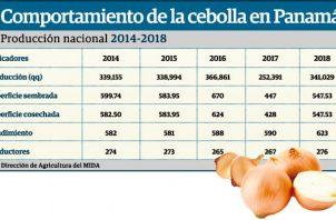 Los precios del kilo de la cebolla a nivel mundial varían según los mercados.