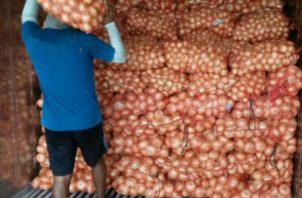 Al país debe ingresar 60 mil quintales de cebolla a 0% de arancel. Archivo