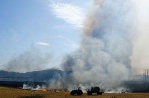 La Conaf señaló que en lo que va del verano (diciembre-marzo) han ocurrido en Chile 5.373 incendios forestales.