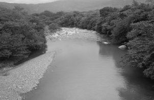 Otra parte que denunciamos son nuestras áreas de la cuenca del Canal, donde aun en las partes más altas, donde se produce el agua, hay fincas ganaderas extensivas, algo inaudito.