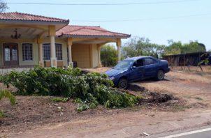 La conductora colisionó con un árbol.. Foto: Thays Domínguez.