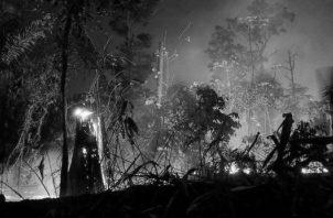 Esta fotografía de archivo del 9 de septiembre de 2019, muestra un incendio en la floresta en la ciudad de Porto Velho, Brasil. En Panamá, se registra la destrucción de miles de manglares, como la desaparición de cientos de ríos .Foto: EFE.