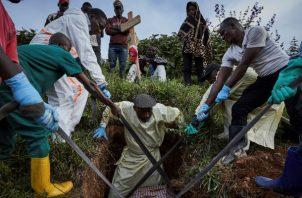 El virus del ébola se transmite a través del contacto directo con la sangre y fluidos corporales contaminados, provoca fiebre hemorrágica y puede llegar a alcanzar una tasa de mortalidad del 90 % si no es tratado a tiempo.
