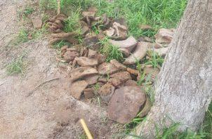 Se trata de tres vasijas de cerámica de considerable tamaño, ubicadas dentro de la finca Molino Morcillo, ubicada a 153 kilómetros al oeste de la ciudad capital, dentro de las cuales se encontraron restos óseos.
