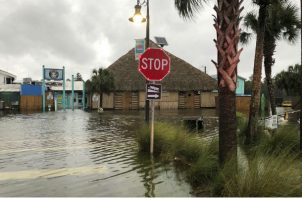 El río St. Marks se desborda en la ciudad de St. Marks, Florida, antes del huracán Michael. AP
