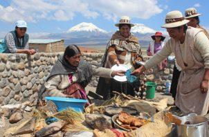 Mujeres de la comunidad Sajama preparando un plato de comida cocinado debajo de la tierra.  EFE/Yolanda Salazar
