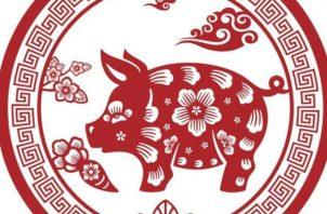 Este es el año del Cerdo Tierra.