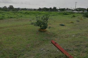 Tierras en disputa, que tienen como valor mínimo  $200 el metro cuadrado, según expertos.  Foto de archivo