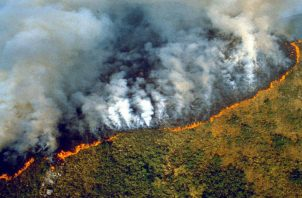 Brasil ha decretado estado de emergencia por los incendios forestales en la selva amazónica.