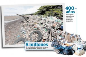En Panamá hay entre 10 y 12 fábricas que se dedican a la confección de bolsas plásticas.