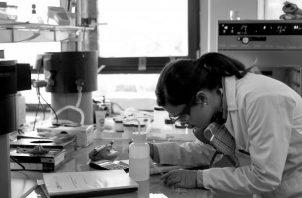 Paradigma es lavisión compartida que tienen los grupos científicos, implica una metodología científica determinada. Foto: EFE.