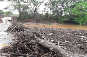 Se observaba gran cantidad de materia vegetal en el cauce del río La Villa. Foto: Thays Domínguez. ,