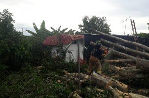 Moradores del lugar indicaron que en horas de la tarde se registró un aguacero acompañado de fuertes vientos, que causaron temor en la población.Foto/Thays Domínguez