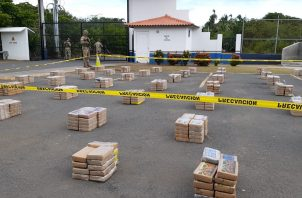 Los paquetes encontrados eran de cocaína, según se confirmó a través de las pruebas de campo realizadas, la cual se encontraba repartida en 55 bultos. Foto/Thays Domínguez