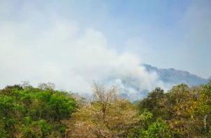 El jefe de los bomberos, Gonzalo Chang,  señala que los gastos de los bomberos para enfrentar los incendios de masas vegetal y bosques superan los 100 mil dólares. Foto/José Vásquez