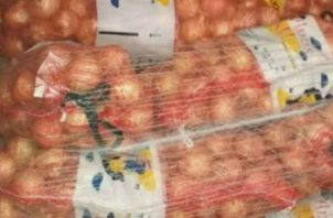 Los cebolleros se quejan de las importaciones. Foto/Archivo
