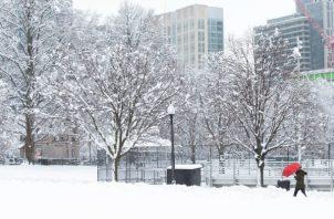 El estado ha desplegado unos 1.600 vehículos para recoger nieve.