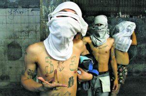 Los 14 sujetos supuestamente son integrantes de la pandilla MON del corregimiento de Curundú.