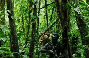 Imagen de la cinta 'Monos'.