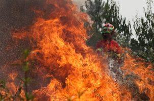 """Los bomberos consiguieron dominar el 85% del área del incendio que se mantiene activo en Vila de Rei, en el centro de Portugal, aunque las altas temperaturas y el viento hacen prever una tarde de """"intenso trabajo"""". FOTO/EFE"""